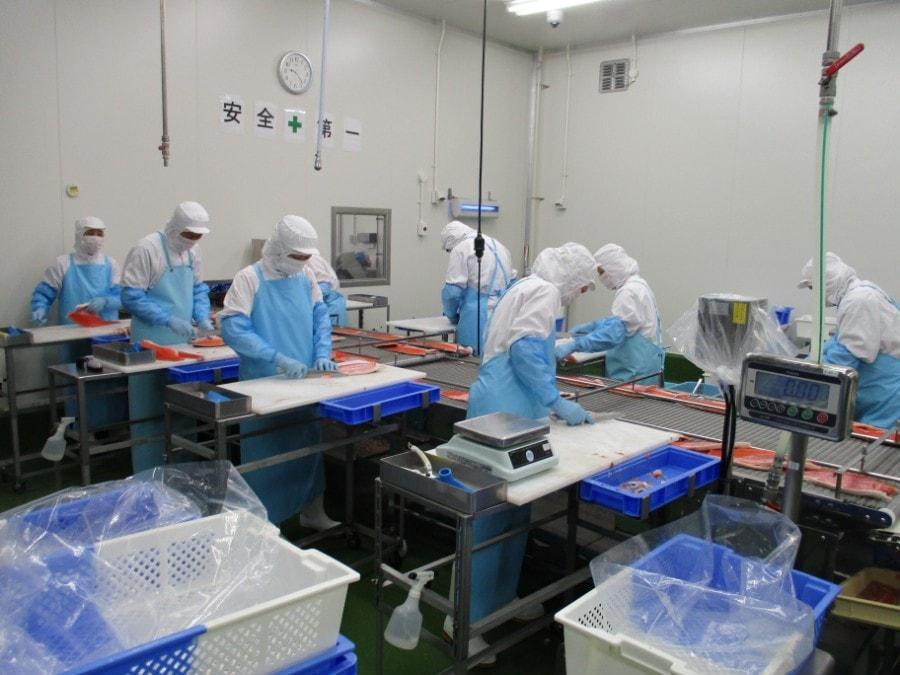 工場内の風景